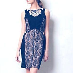 Maeve Paneled Black Lace Dress for Anthropologie
